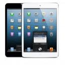 iPad mini version Wifi